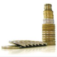 Seminario: Presupuesto y Flujo de Caja