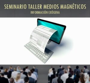 SEMINARIO TALLER MEDIOS MAGNÉTICOS – INFORMACIÓN EXÓGENA.