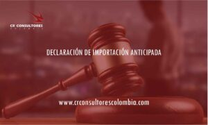 DECLARACIÓN DE IMPORTACIÓN ANTICIPADA